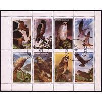 М.л. фауна. Великобритания, Шотландия, Стаффа  1977. Хищные птицы. Малый лист. Гаш.