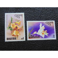 Бутан.  Цветы.