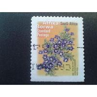 ЮАР 2001 стандарт, цветы