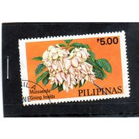 Филиппины. Цветы.