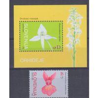[1419] Словения 2005. Флора.Цветы.Орхидеи.