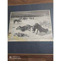 Старинная гравюра 1908г.