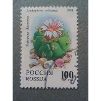 Россия. Флора. 1994г. гашеная