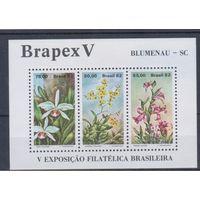 [1521] Бразилия 1982. Флора.Цветы.Орхидеи. БЛОК.