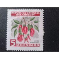 Уругвай 1954 цветы