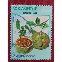 Мозамбик 1982г. Флора.