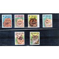 Кошки на марках Сахары 1999 год