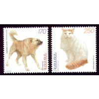 2 марки 1999 год Армения Фауна 359-360