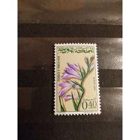 1965 Королевство Марокко флора цветы гладиолусы чистая клей след от наклейки (2-10)