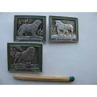 Значки. Породы собак: Ньюфаундленд, Бульдог, Пудель. цена за 1 шт.