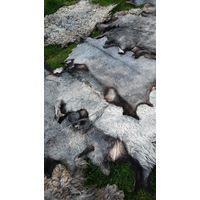 Шкуры овечьи