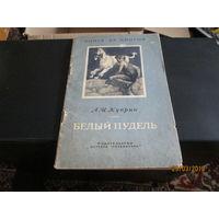 Книги по рублю 5