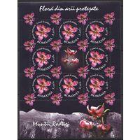 2009 Румыния Флора Цветы кб
