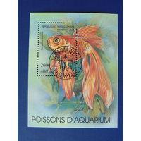 Мадагаскар 1994г. Морская фауна.