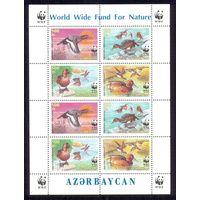 Азербайджан WWF фауна птицы