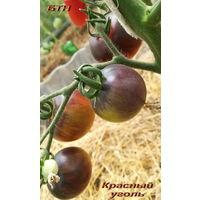 Семена томата Красный Уголь