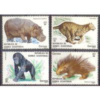 Экваториальная Гвинея фауна