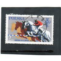 Польша. Mi:PL 2674. Конный сорт. Серия: Олимпийские игры 1980 - Москва.