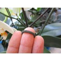 Ложновитое кольцо