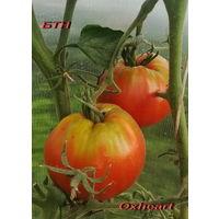 "Семена томата ""Оксхарт (Oxheart) """