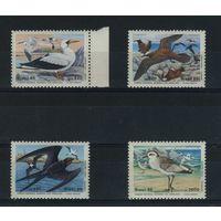 Бразилия 1985г. птицы. 4м.