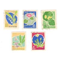 5шт 1966 Корея гаш флора цветы