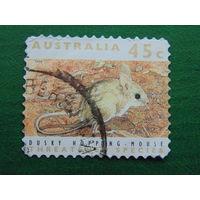 Австралия 1992г. Фауна.