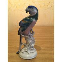 Статуэтка фарфоровая попугай Ара, Германия