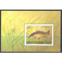 Киргизстан 1994 Фауна. Рыбы, блок