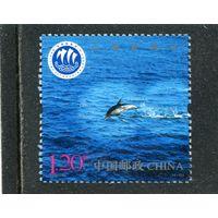Китай. Национальный день моря. Дельфин