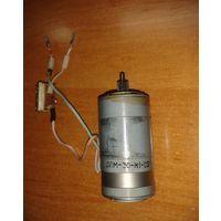 Электродвигатель ДПМ-30-Н1-02