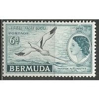 Бермуды. Королева Елизавета II. Птица Фаэтон. 1953г. Mi#138.