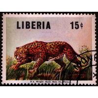 Кошки. Либерия. 1966. Леопард. Марка из серии. Гаш.