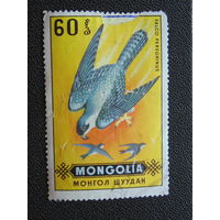 Монголия 1970 г. Дикие хищные птицы. Сапсан./Сокол/.