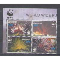 Микронезия WWF Морская фауна 2005 год чистая полная серия из 4-х марок