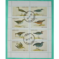 Нагаленд. Птицы. ( Малый лист ) 1972 года.