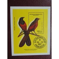 Мадагаскар 1987г. Птицы