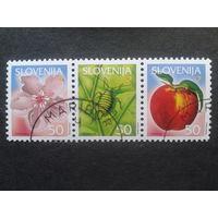 Словения 2001 стандарт сцепка яблоко