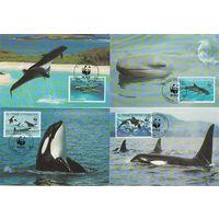 Сен-Томе и Принсипе Четыре картмаксимума WWF Касатки, 1992 год
