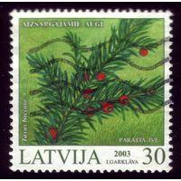 1 марка 2003 год Латвия 588