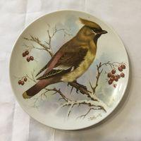 Тарелка настенная Свиристель (птица)