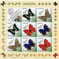 Молдова 2013 г.  ФАУНА Насекомые Бабочки МЛ* MNH