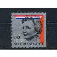 Нидерланды 1973 Юлиана 25 летие правления #1017