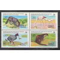 Чили Фауна 1985 чистая полная серия из 4-х марок в квартблоке