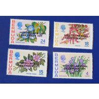 Бермудские о-ва. 1971-12 -20. Цветы
