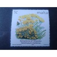 Мальта 2006 цветы