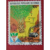 Конго 1984г. Флора.