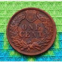 США 1 цент 1906 года, Индеец. Тигровый цент!