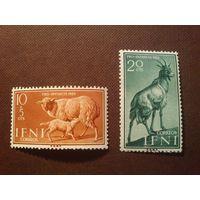 Испания. Ифни 1959 г.Овечки, коза.