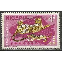 Нигерия. Леопард с детёнышами. 1965г. Mi#180.